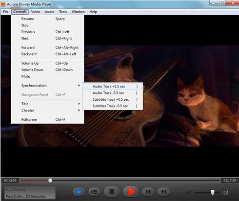 flv media player  for windows 8